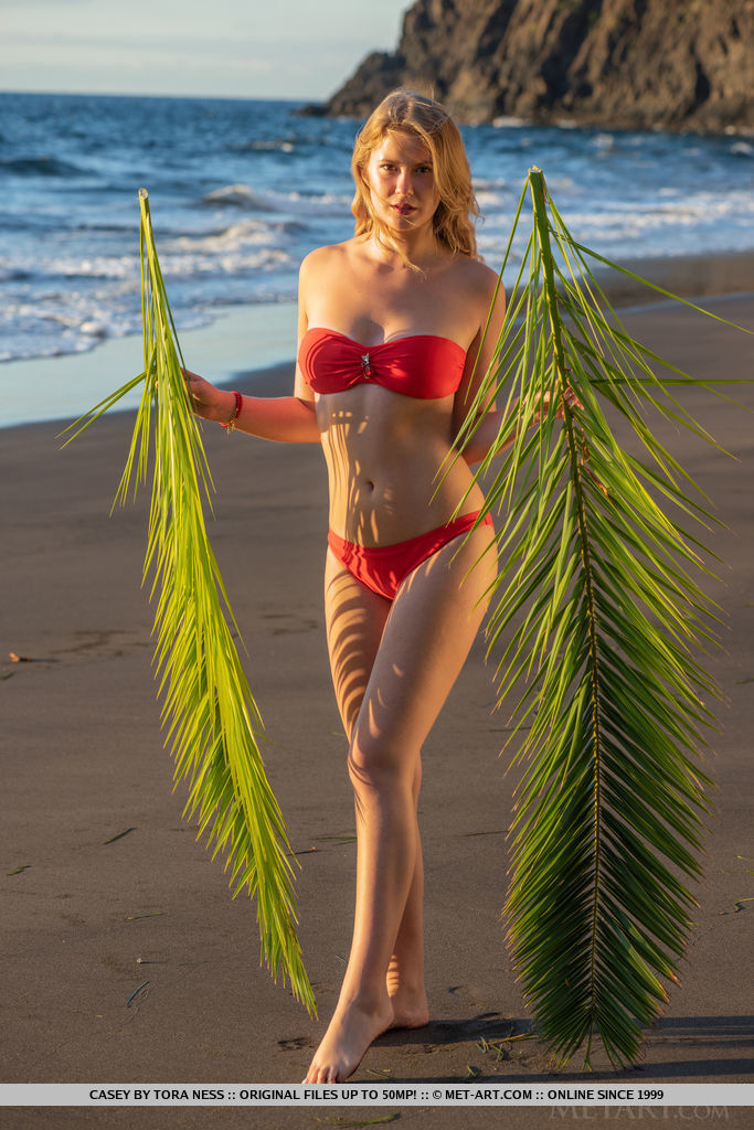 MetArt - Casey in Palm Fronds